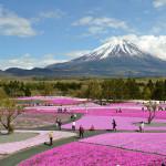 再び富士山へ♪
