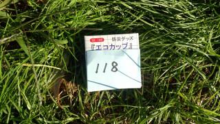 DSC_0380_s