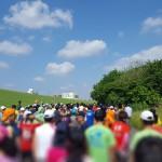 今大事なこと【月例赤羽マラソン】2017年5月