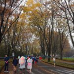 【サブ4三部作】エピソード1-つくばマラソン2016(1)
